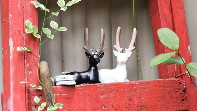Dear deer 1