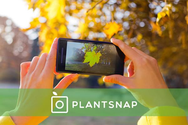 手機裡的植物學家:PlantSnap 植物辨識 App