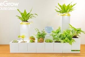 像樂高一樣堆疊、組裝,LeGrow智慧盆器輕鬆打造室內庭園生態系
