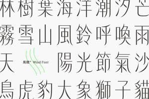 當文字如風一般輕盈優雅:風體字型集資計畫