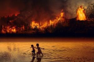 亞馬遜雨林大火,我想贊助集資計畫:怎麼確定錢有被用在對的地方?