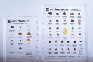 把恐龍化石放口袋!蒐藏控最愛的迷你博物館,帶你從小標本認識大歷史